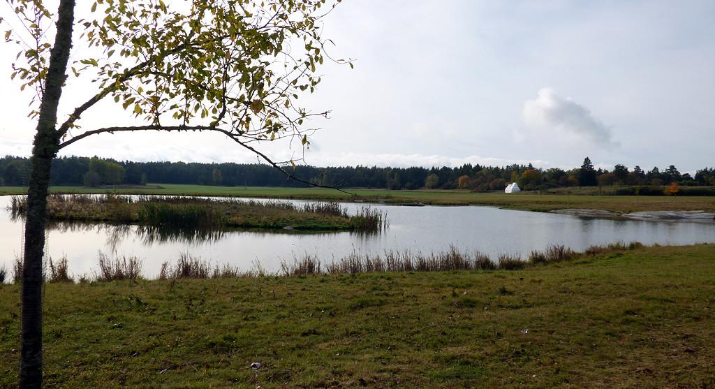 Torslunda_dammen_utsikt