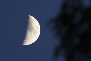 95K6684_måne